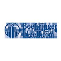 bi_partner_logo